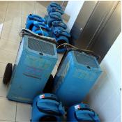 flood repair sydney